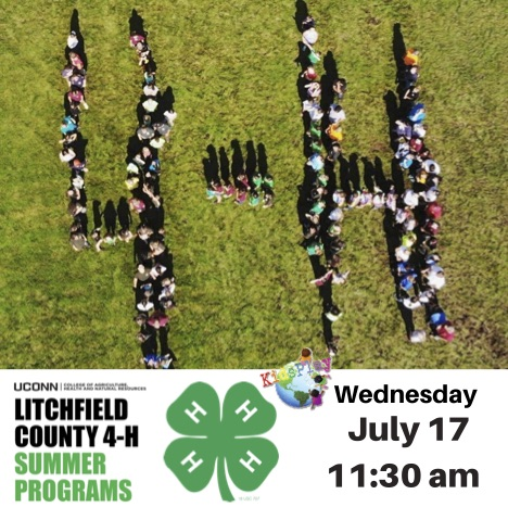 Litchfield County 4-H Summer Programs