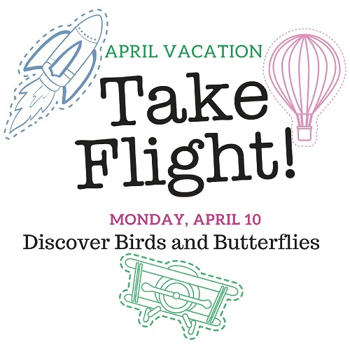 Discover Birds and Butterflies